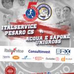 17a, ITALSERVICE-ACQUAESAPONE LOCANDINA