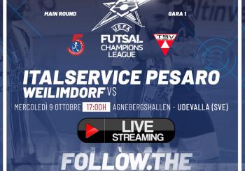 Champions League, ore 17.00 Italservice Pesaro-Weilimdorf: DIRETTA STREAMING QUI